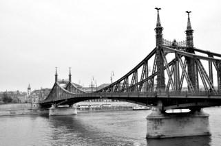 Freedom bridge