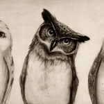 http://isaiahstephens.deviantart.com/art/The-Owls-Three-414970510