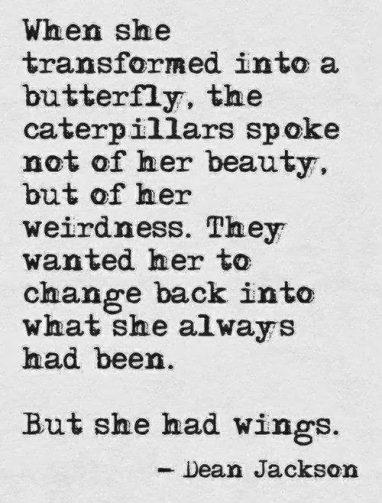 caterpillarsandbutterflies