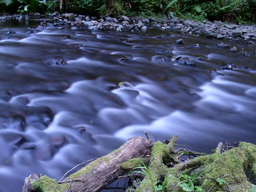 Stream by ajschu, on Flickr