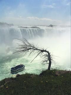 niagara falls #0006