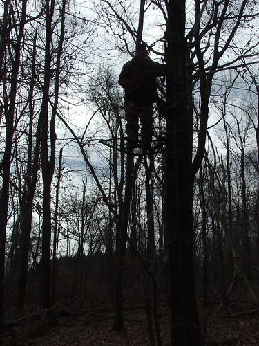 hunter in treestand