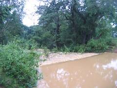 Kollibacchalu Dam -Malenadu Heavy Rain Effects Photography By Chinmaya M.Rao   (119)