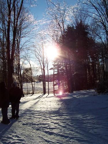 Ice on the trees in NY