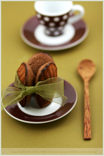 My Chocolate Madeleines for a Sunday Picnic — Mes madeleines au chocolat pour le pique-nique du dimanche