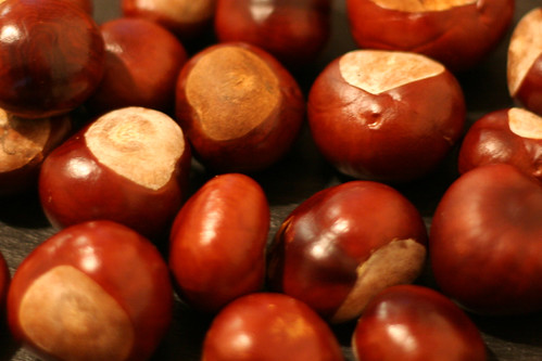 conkers by Jim Barter, on Flickr