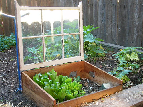How To Grow A Four Season Garden – Part 2 One Green Generation