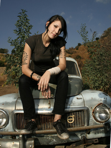 alkaline trio. artist. old car