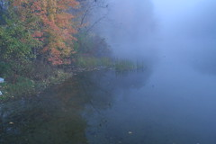 Misty Morning Refelctions