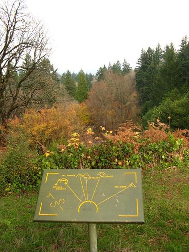 Portland | Non-view of Mt. Saint Helen's