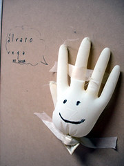 the guardian glove