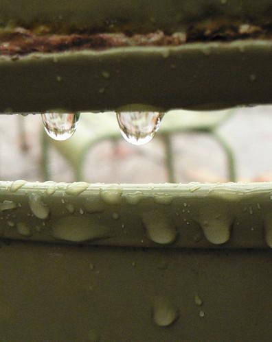 rain drops on bench