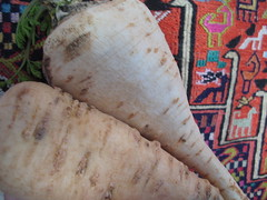 parsnip vs parsley root 2