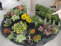 Community grown vegetables_Cuba 218