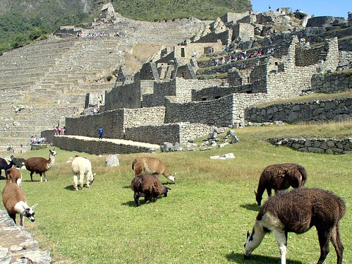 Machu Pichu, Peru por YoTuT.