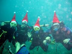 diving family