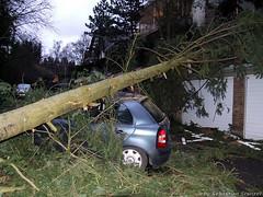 Orkan über Wiesbaden - Baum auf PKW