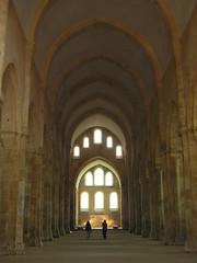 Fontenay la nef de l'abbaye