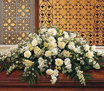 white roses on flickr