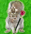 Squirrel Queen