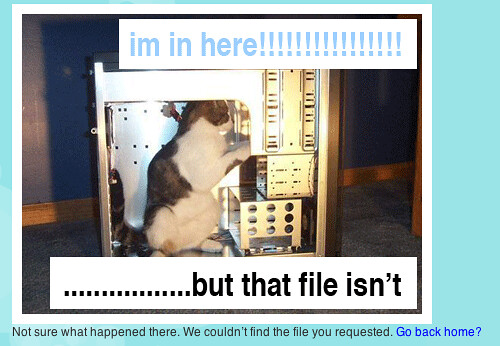 File Not Found