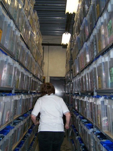 Going down the aisles