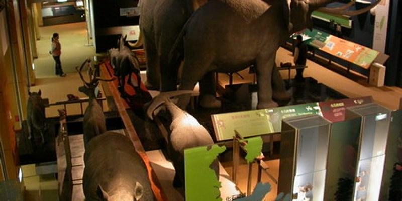 台東台灣史前文化博物館(2.6ys)