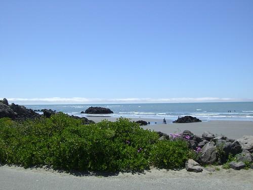 New Zealand in summer