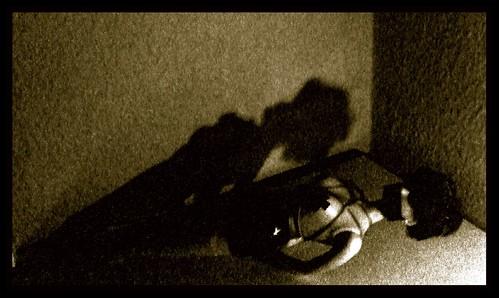 La muñeca y la sombra