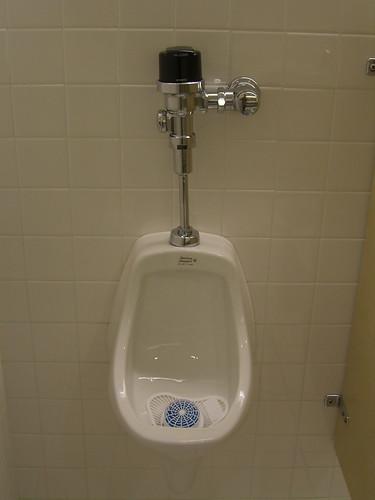 auto flush urinal