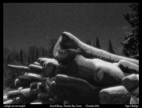 Midnight Star over the Woodpile by Roger Mulligan