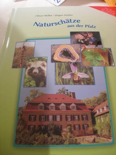 Pfalzbuch