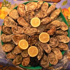 Des huîtres! Quel délice