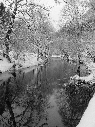 Forge Creek with Snow BW by Waynes World 7