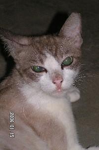 Sara_reclining_sideview_fullface_20060115x