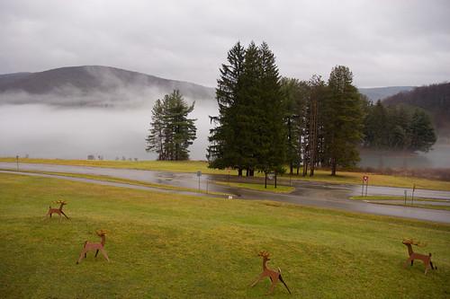 wooden deer and fog