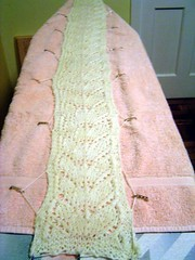 blocking the branching out scarf