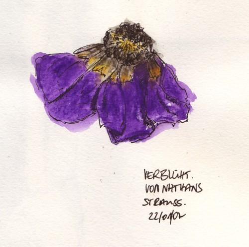 Verblühte Blume