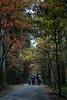 Photo:20161126 Ensyu Autumn leaves 6 By