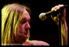 Iggy and the Stooges  _MG_4588.jpg