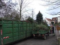 Tannenbaumsammelaktion 06./16.01.2007
