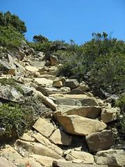 Start the climb