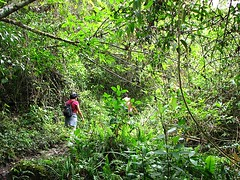 El camino a Gocta