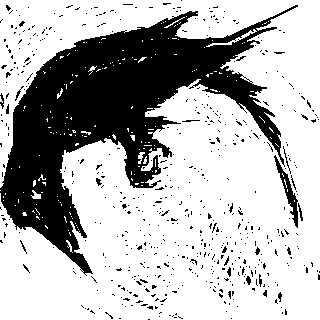 DiddleBug drawing - crow