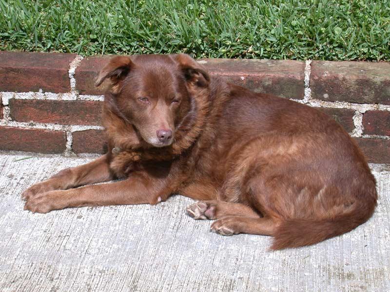 Rita, Dec, 2006