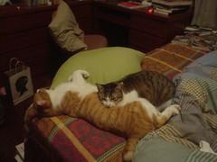 [柳丁] 你是我的抱枕 (1)