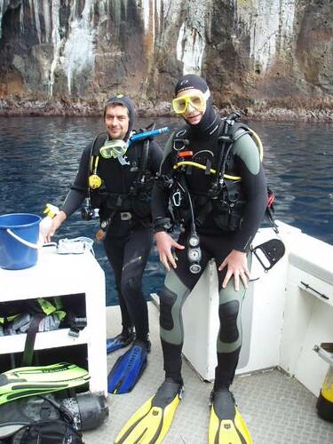 Diving gimps