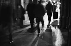 Leica28_1p.jpg