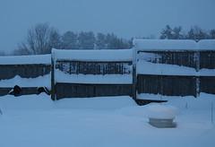 snowapril_garden