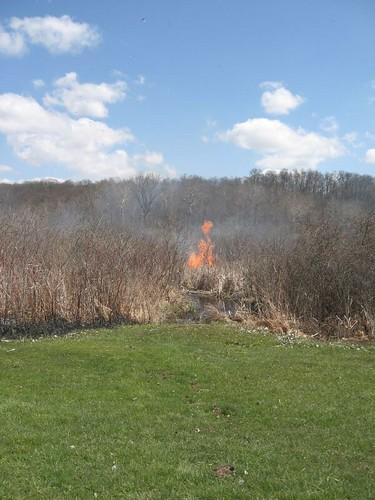 Wetland_Burn_April_20_2007 006